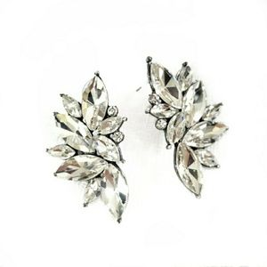 Stunning White Crystal Statement Earrings